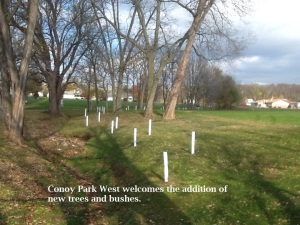 Conoy Park West welcomes the addition of new bushes and trees.